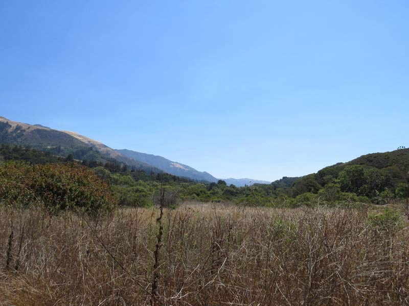 Big Sur Nearby Activities