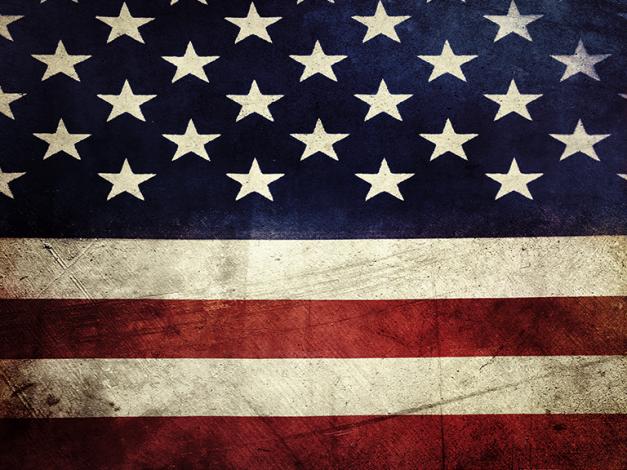 Veteran's Day Promo Flag